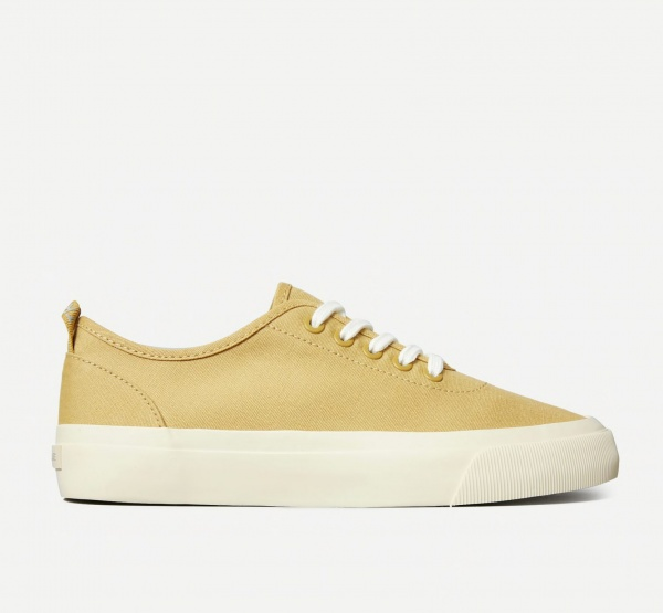 everlane sustainable sneaker